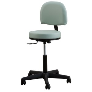 Premium Stool with Backrest-High Height Range
